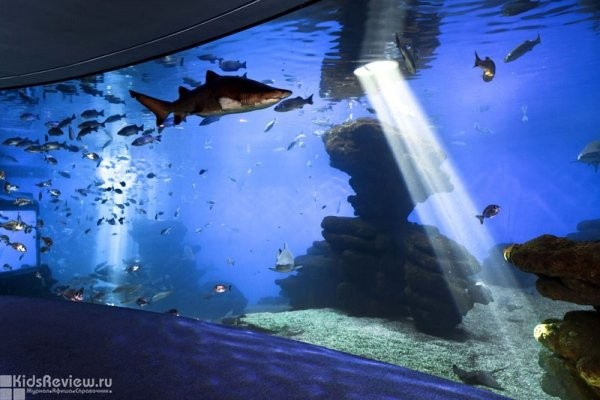 The Palma Aquarium in Palma-de-Mallorca, Spain