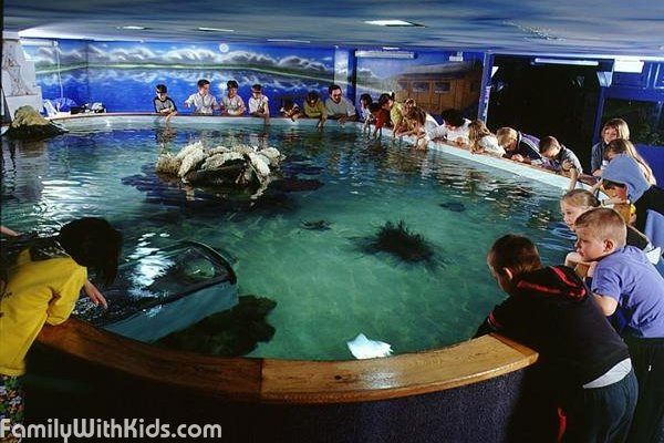 The Tropicarium in Budapest, Hungary