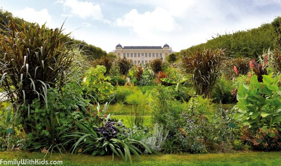 jardin des plantes the garden of plants in paris france